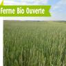Ferme Bio Ouverte chez Alain CORDIVAL (52)